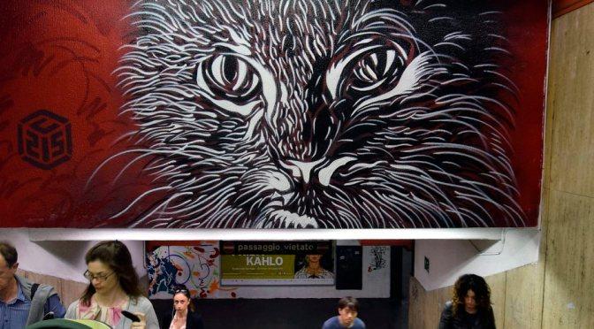 Metro Spagna. Murale di C 215