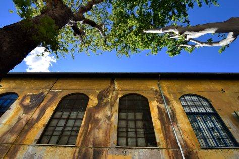 Circolo Mario Mieli, murali di Borondo