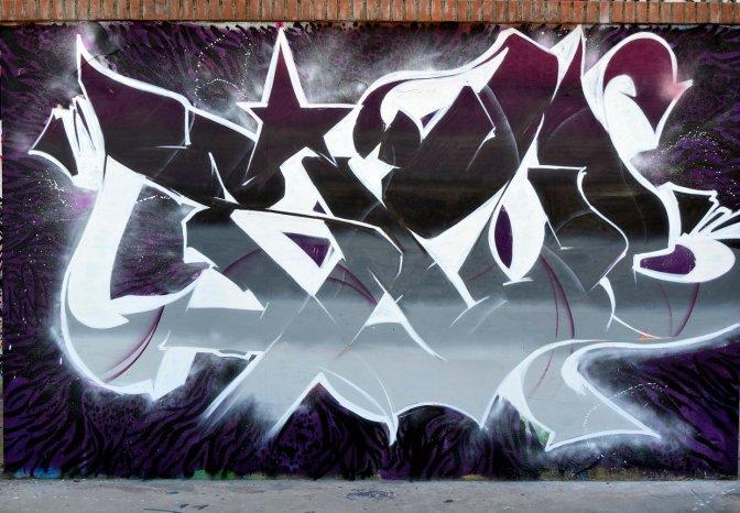 Roma Street Art. In giro con i writer. Tiburtino, Prenestino, Portuense, Talenti, Eur Vallerano